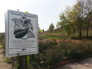 Photo of a monarch waystation sign in front of a garden