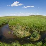 Photo of a stream winding through the prairie