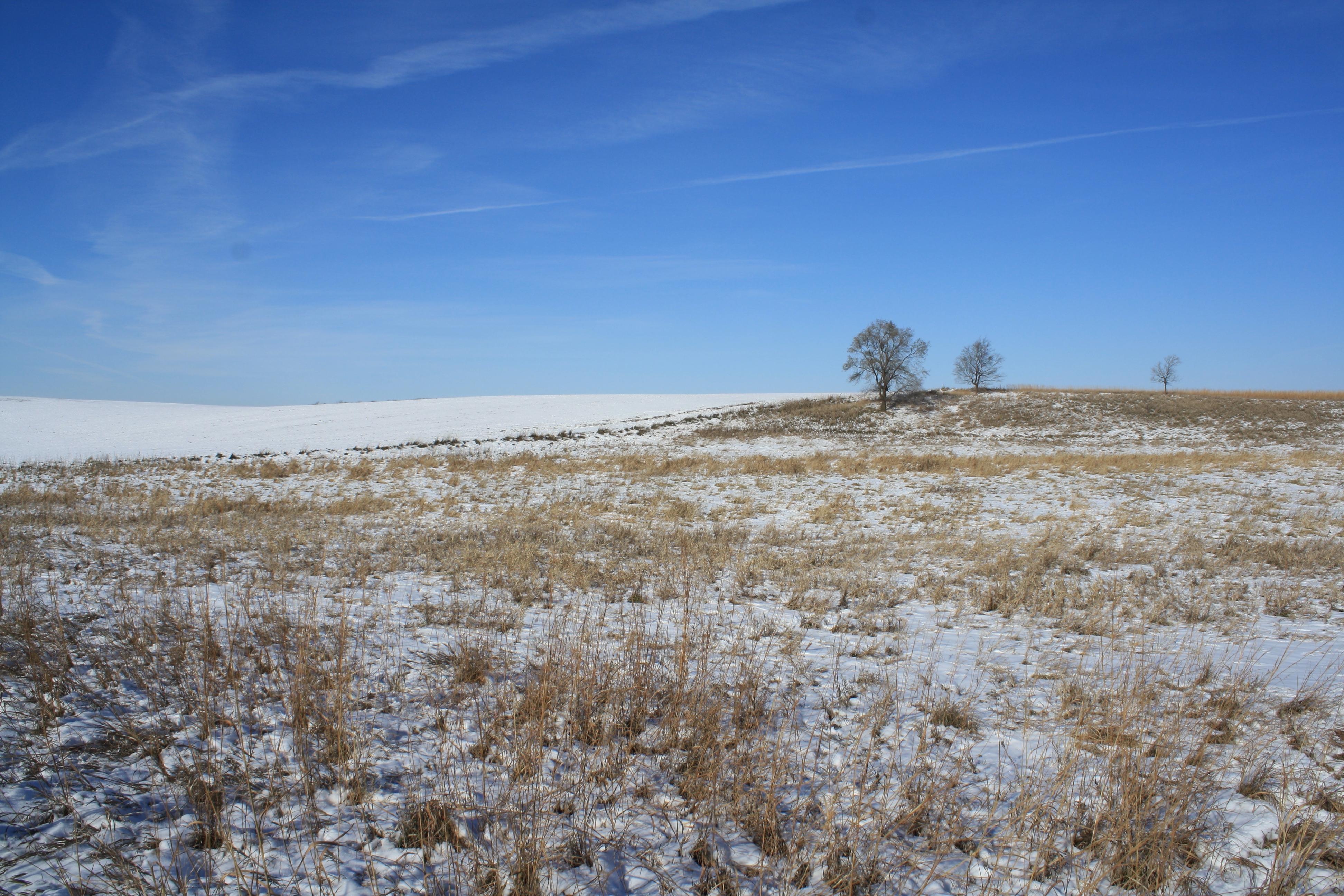 Snowy plains by Back5tabber on DeviantArt