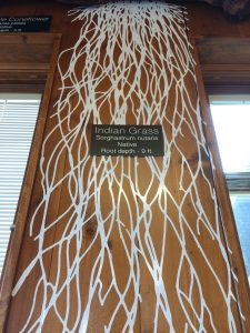 Photo of Indian grass root design