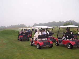 Photo of golf carts