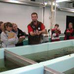Photo of fish hatchery