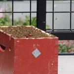 Photo of bee box