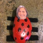 Photo of a rock lady bug with a photo head