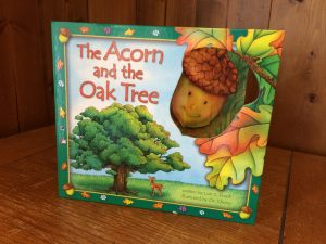 """Photo of """"The Acorn and the Oak Tree"""""""