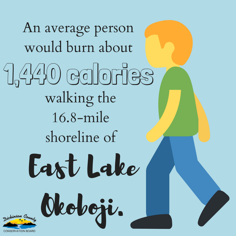 Graphic that says an average person would burn about 1,440 calories walking the 16.8-mile shoreline of East Lake Okoboji