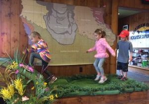 Photo of kids bouncing on a fen