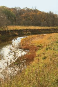 Photo of the Little Sioux River curling through the Little Sioux Savannah