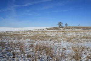 Photo of snowy plain