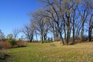 Photo of a picnic area in fall