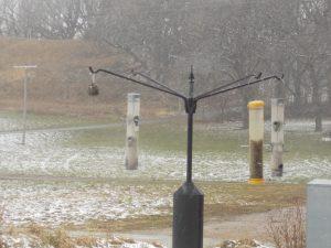 Photo of bird feeders