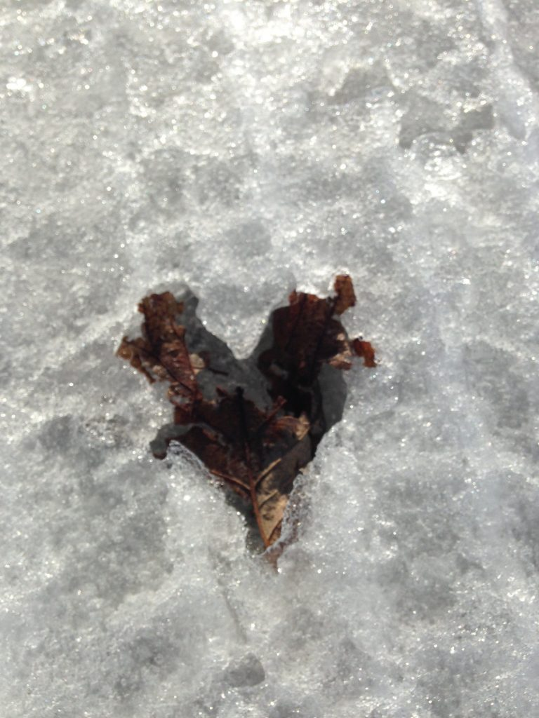 Photo of leaving making a heart in the snow