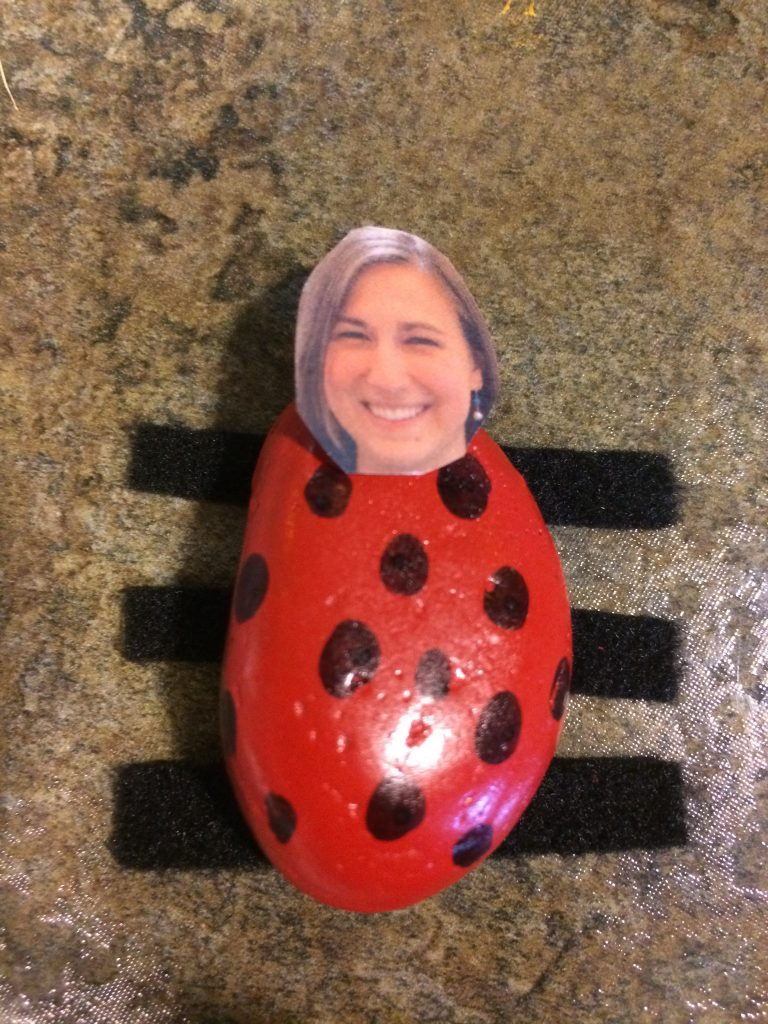 rock lady bug with a photo head