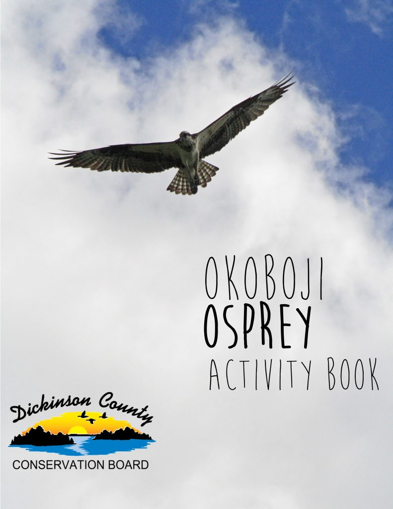 the activity book cover