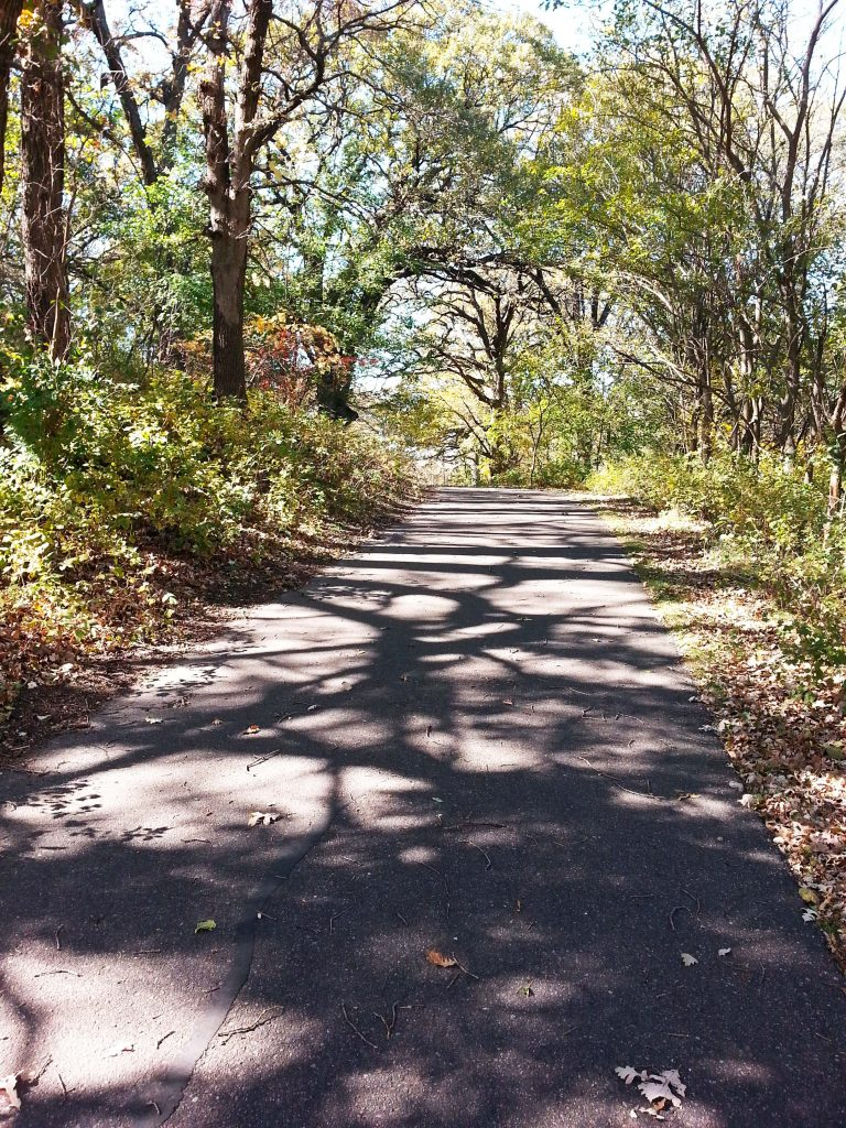 trail in Kenue Park