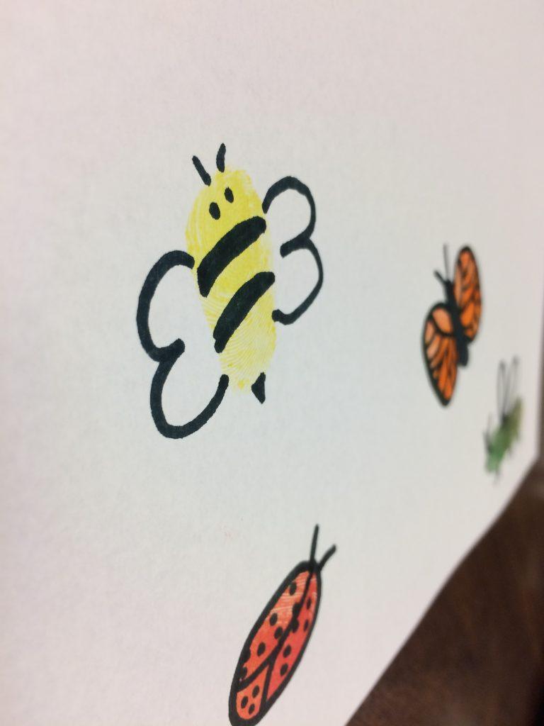 Photo of thumbprint bugs