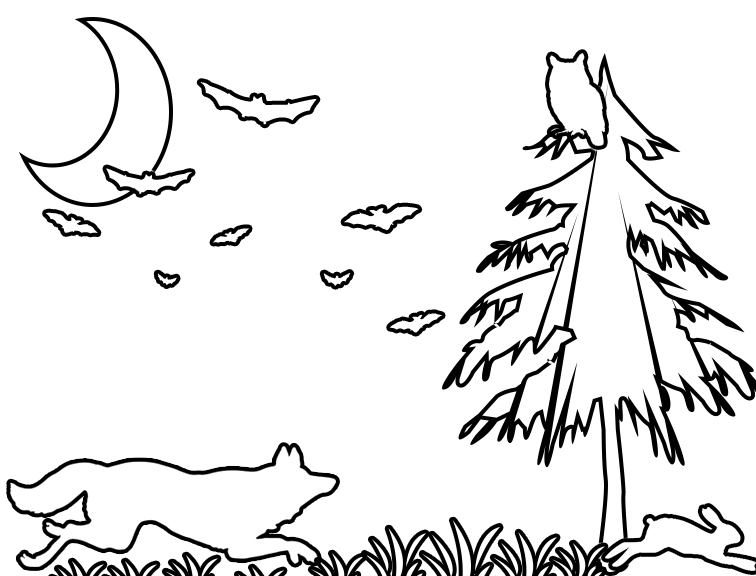 Photo of a coloring page