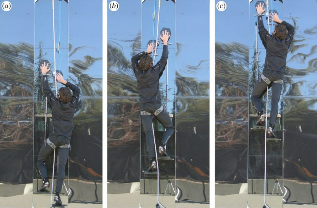 person climbing glass