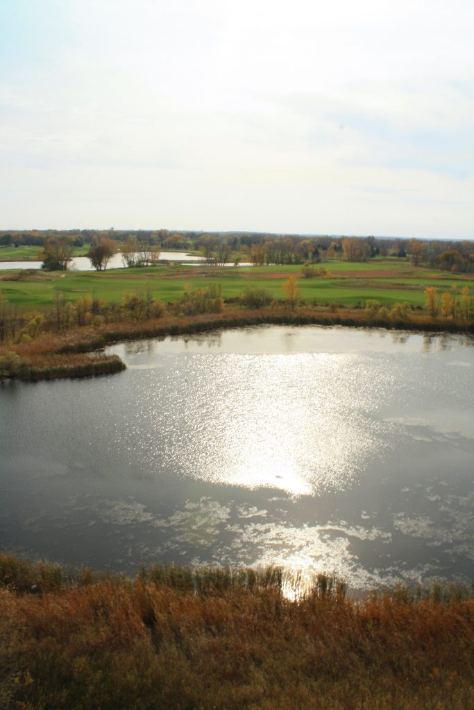 Aerial photo of wetland