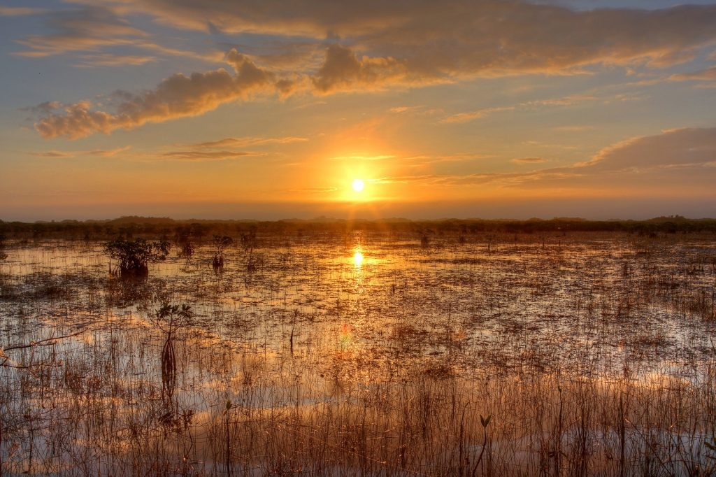 Photo of sunset over everglades