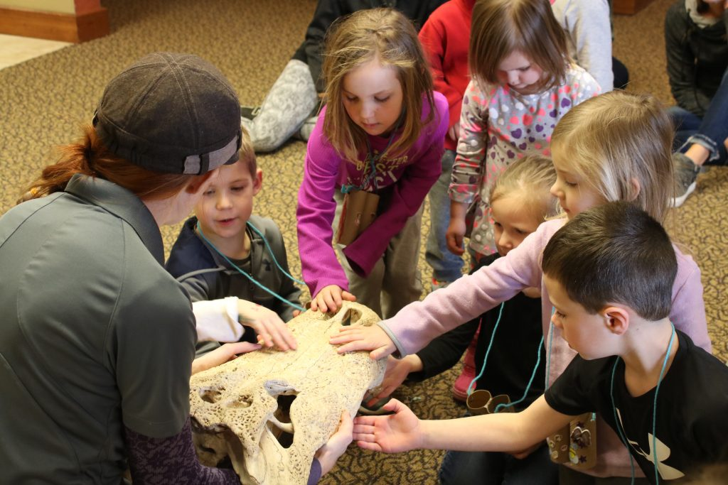 Photo of kids touching an alligator skull