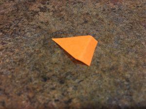 Photo of cut beak