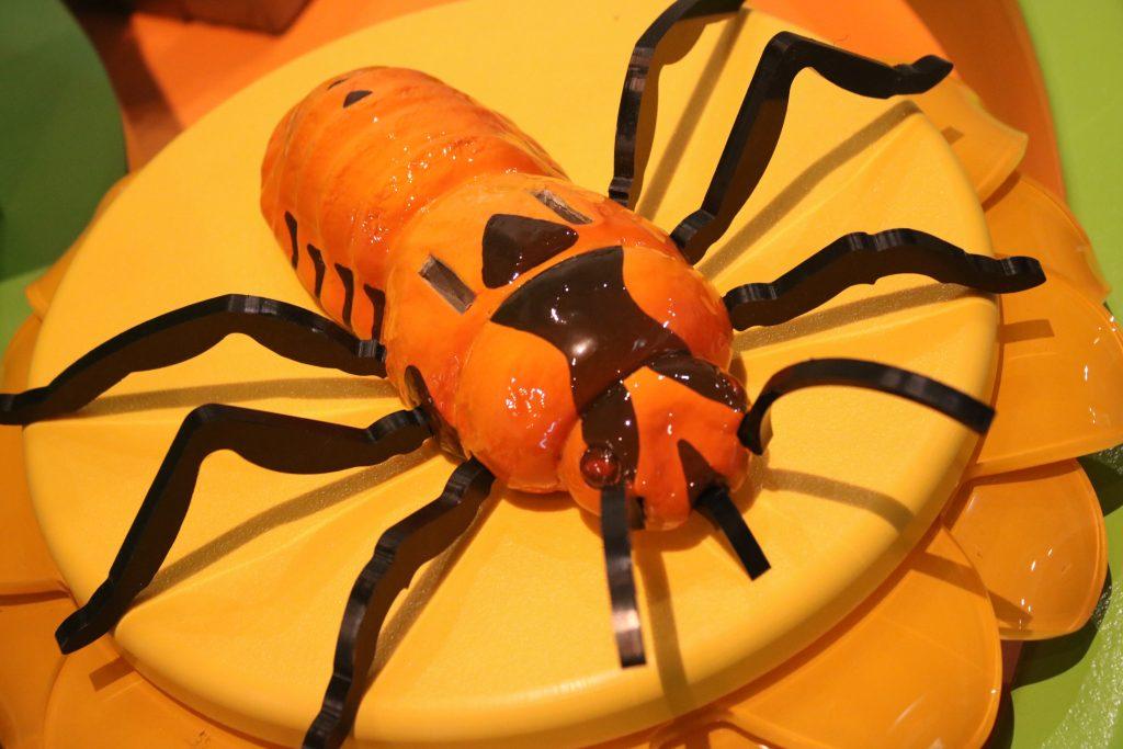 milkweed beetle in exhibit