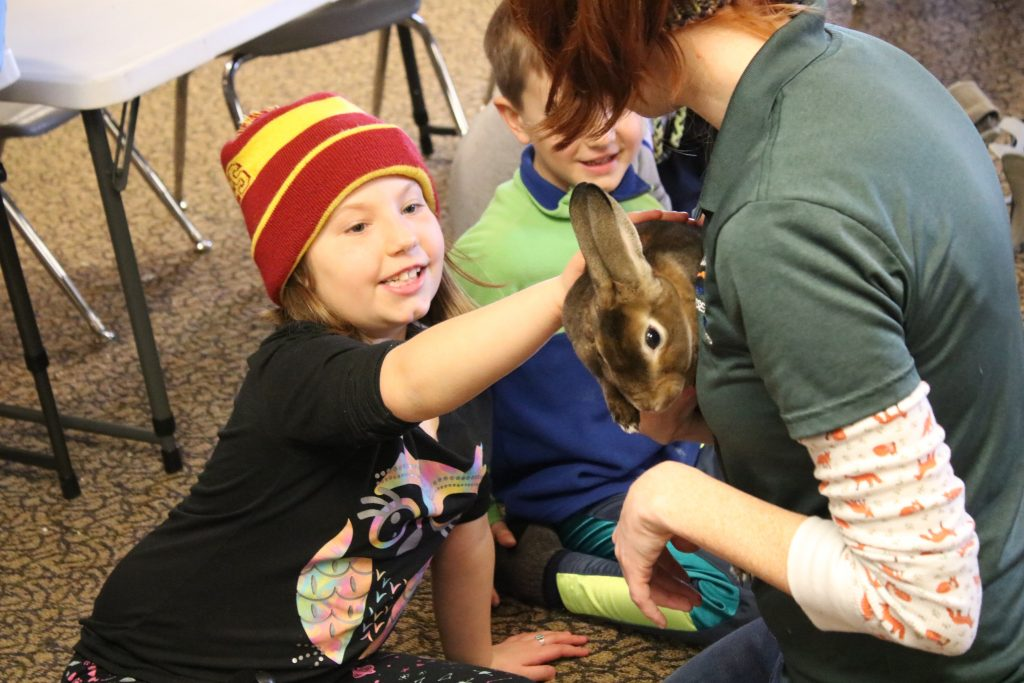 Photo of child petting a bunny