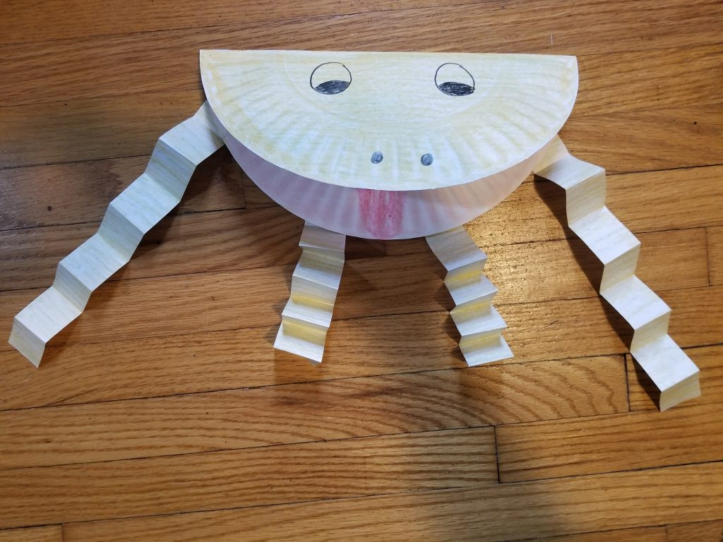 Photo of paper plate toad