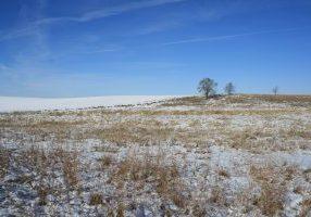 Photo of snowy plain