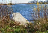 Photo of a dock jutting into the water