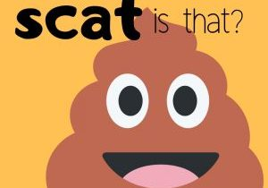 Graphic that says whose scat is that?